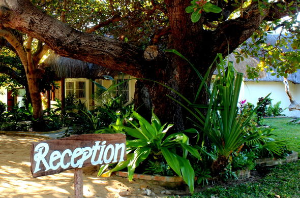 Reception area of Archipelago.