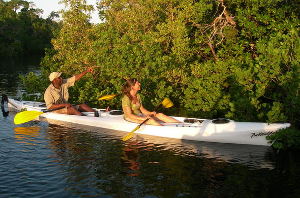 Guided kayak mangrove experience on Ibo Island.