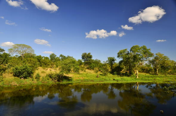 Machampane Wilderness Camp is located in the stunning Limpopo National Park.
