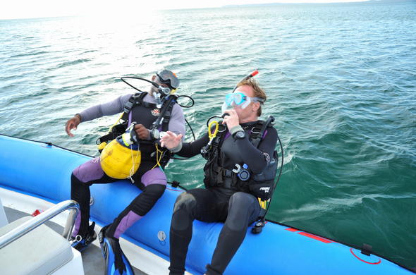 Excellent diving opportunities in Mozambique.
